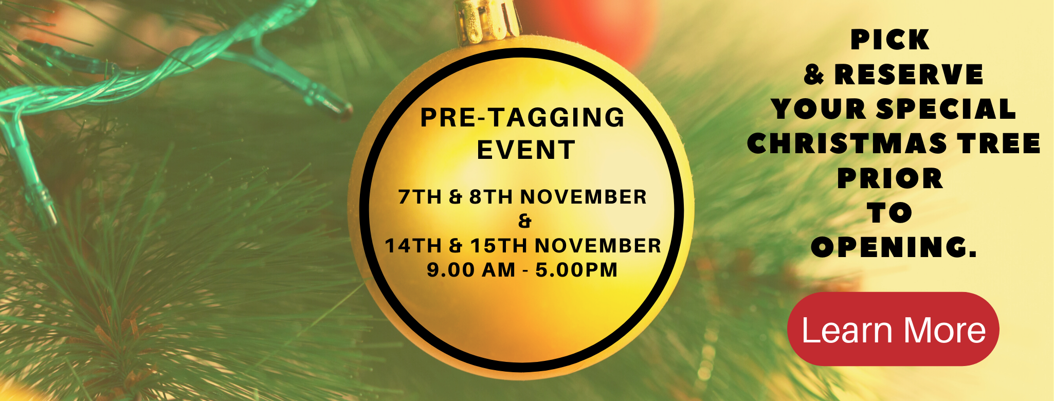 "You are invited to come along to our ""Pre Tagging Day"" - Learn More"