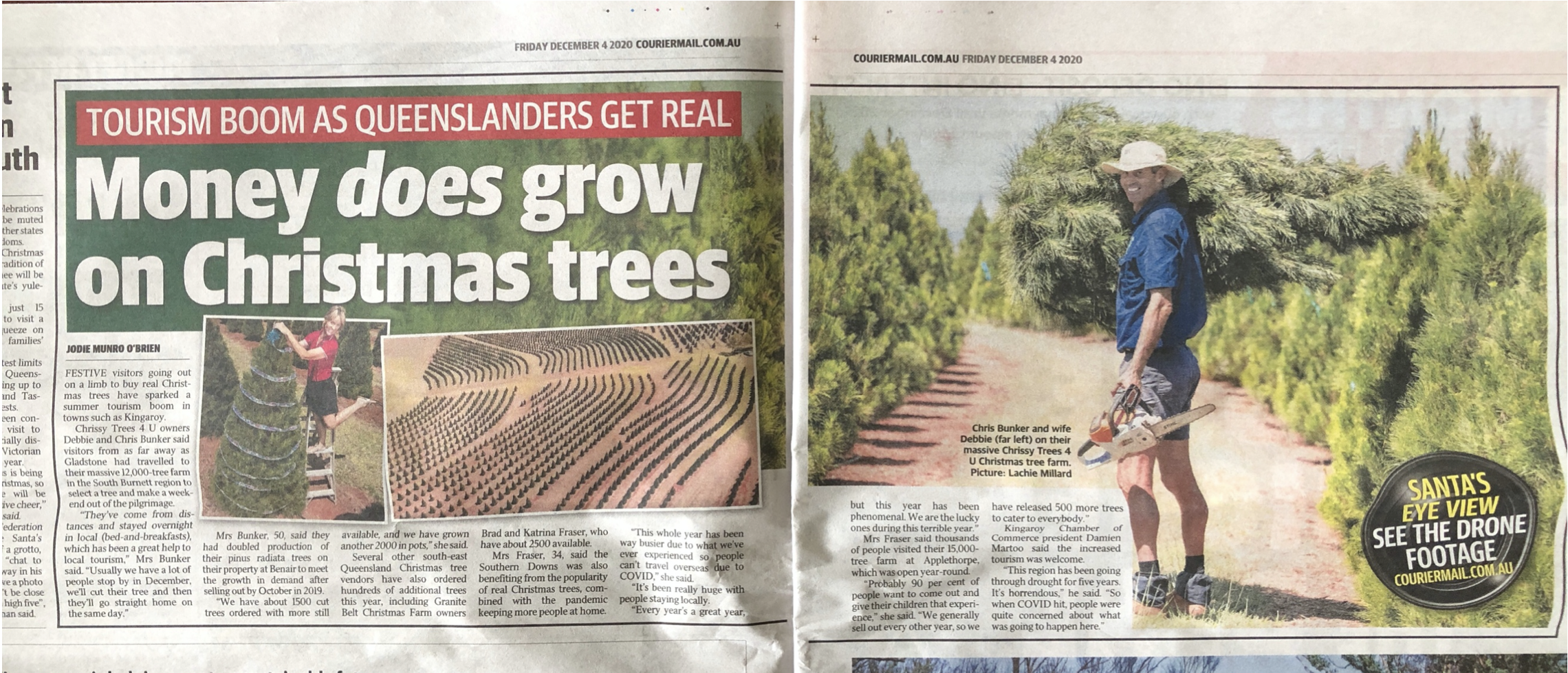 Visitors from as far as Gladstone (380km away) travel to Kingaroy to buy a real Christmas tree at Chrissy Trees 4 U farm!